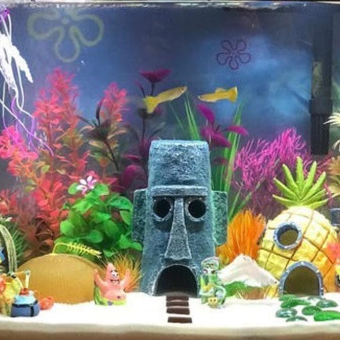 Jual Dekorasi Aquarium Aquascape Rumah Spongebob Squidward Hiasan Akuarium Jakarta Barat Dodisaputra582 Shop Tokopedia