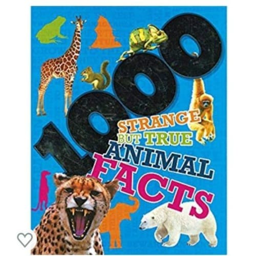 animal facts