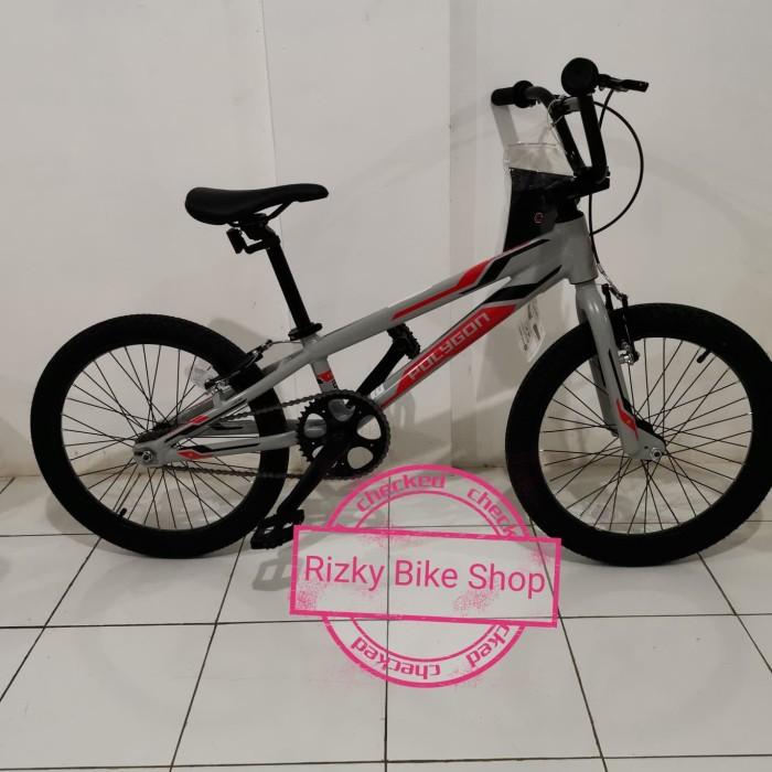 Jual Sepeda Bmx Polygon Fritz 20 Grey Kab Bekasi Rizky Bike Shop Tokopedia