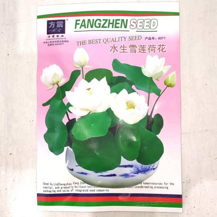 Foto Produk Benih Biji Bibit Snow White Lotus putih teratai tanaman air nelumbo dari Biji Benih