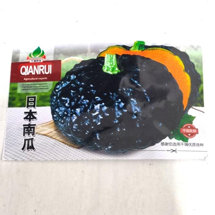 Foto Produk Benih Biji Bibit Labu Hitam Jepang (Manis) Retail Pack dari Biji Benih