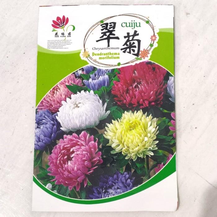 Foto Produk Biji Benih Bibit bunga Chrysanthemum rainbow mix krisan retail pack dari Biji Benih