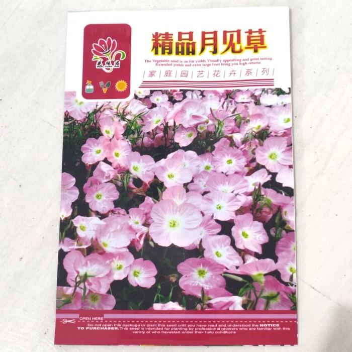 Foto Produk Biji Benih Bibit bunga pink evening primrose retail pack dari Biji Benih
