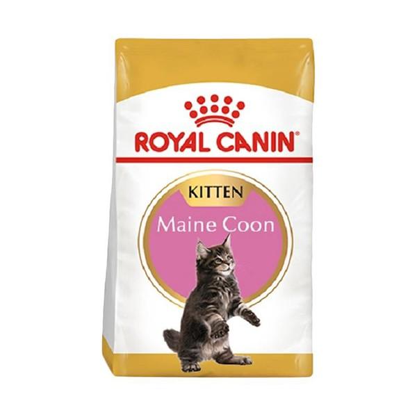 Foto Produk royal canin 4 kg kitten maine coon dari F.J. Pet Shop