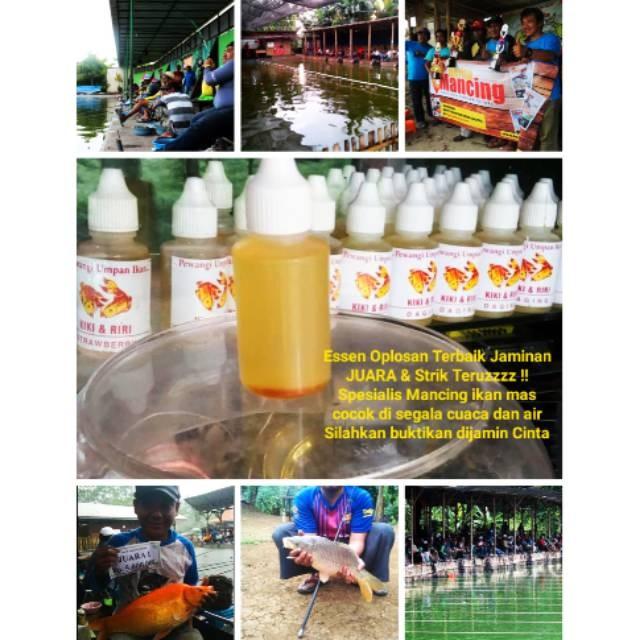 Jual Essen Racikan Super Ikan Mas Pasti Juara Dan Strike Terus Jakarta Pusat Botekno Tokopedia