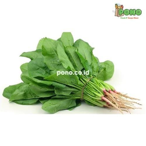 Foto Produk Horenzo spinach 250gr dari Pono Area Solo