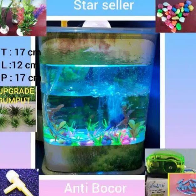 Jual Aquarium Mini Ikan Hias Cupang Guppy Bisa Lampu Tidur Mesin Aerato Jakarta Timur Yesshopcom Tokopedia