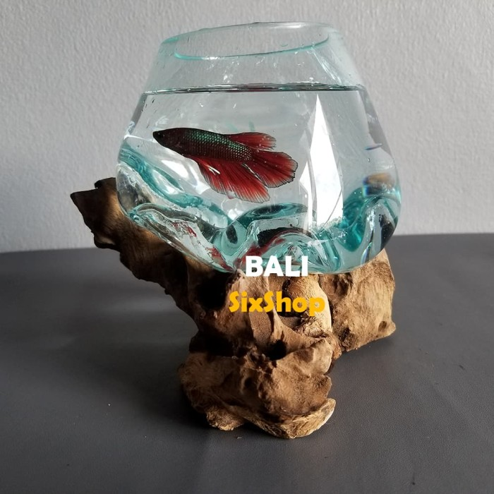 Jual Aquarium Ikan Hias Cupang Dll Gelas Kayu Dekorasi Rumah D12 Cm Kota Denpasar Bali Six Shop Tokopedia