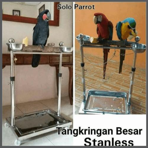 Jual Perch Stanless Burung Macau Kakatua Parrot Kota Semarang Celine Rolinda Tokopedia