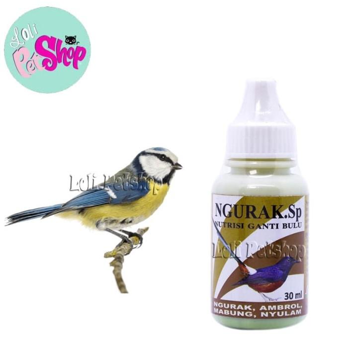 Jual Obat Vitamin Burung Kicau Mabung Ngurak Sp Kab Bekasi Loli Petshop Tokopedia