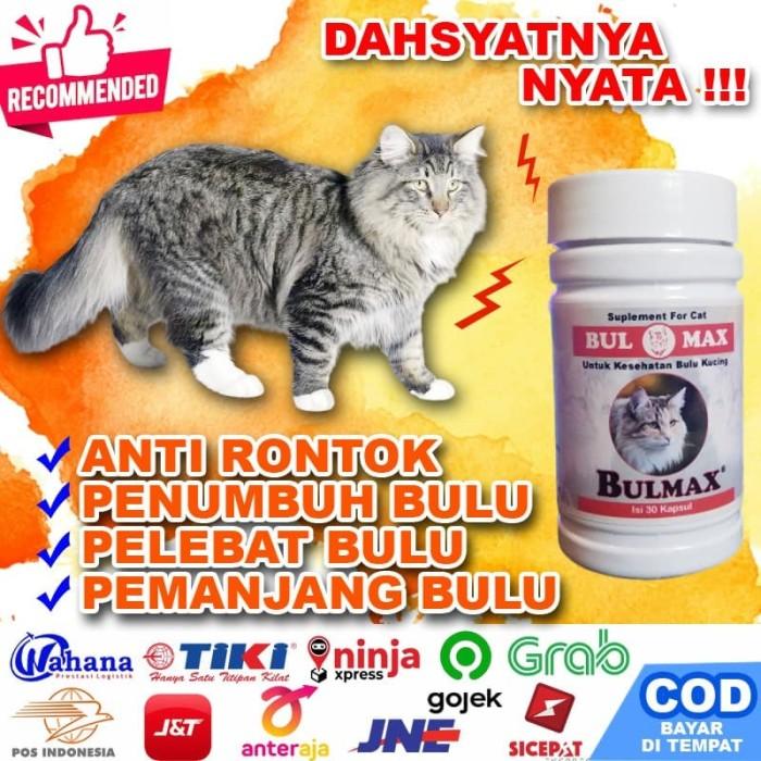 Jual Bm25 Obat Penumbuh Bulu Kucing Vitamin Bulmax Pelebat Bulu Kucing Jakarta Selatan Cantikin Store Tokopedia
