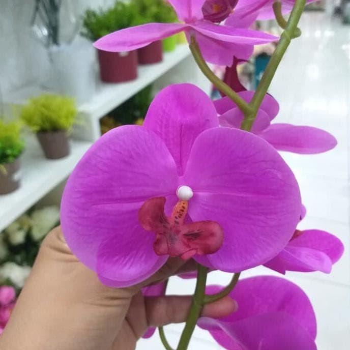 Jual Bunga Anggrek Latex Anggrek Bulan Ungu Anggrek Artificial Orchid Jakarta Timur Desyafina Tokopedia