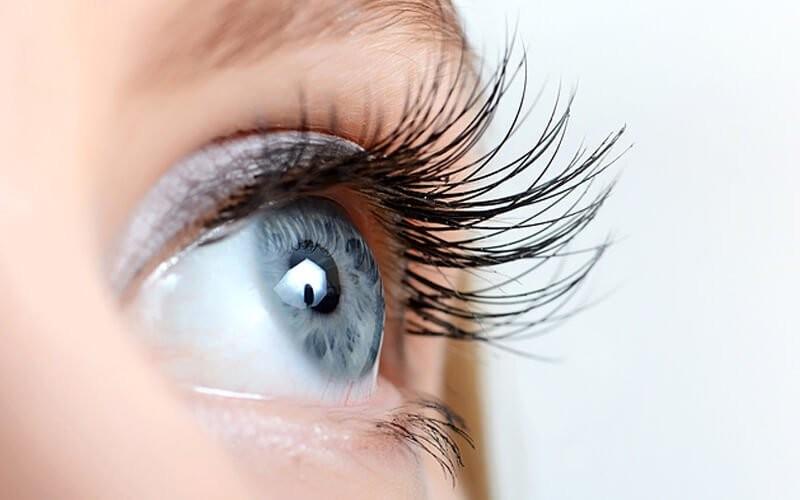1x Korean Natural Eyelash Extension + Lash Brush