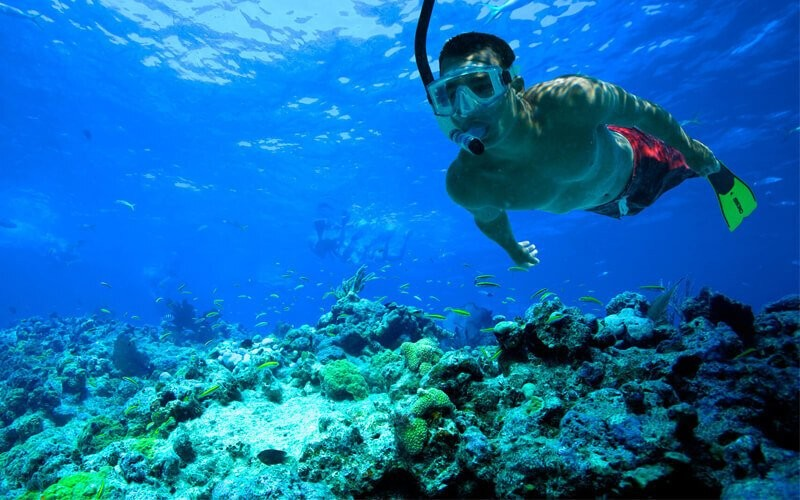 Snorkeling Packages Lembongan Island Manggrove Crystal Bay G- wall untuk 5 - 10 Orang  Group Domestic