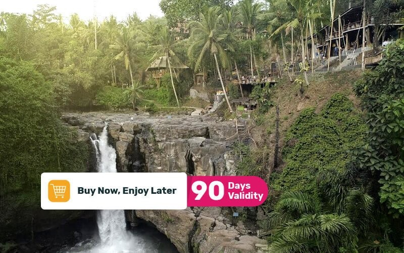 1 Day Pass + Pool Access + Waterfall Access + Soft Drink