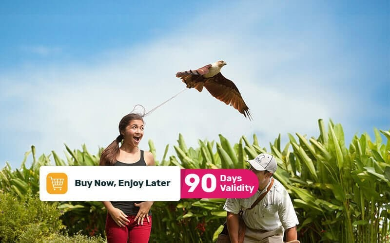 Entry Ticket to Bali Bird Park For 1 Adult