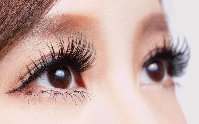 For 2 Persons: Eyelash Japanese Lash Tint