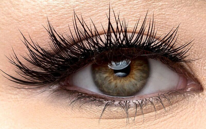 Volume Lash (Free Spa Eyelash + Mascara Brush + Eye Patch)