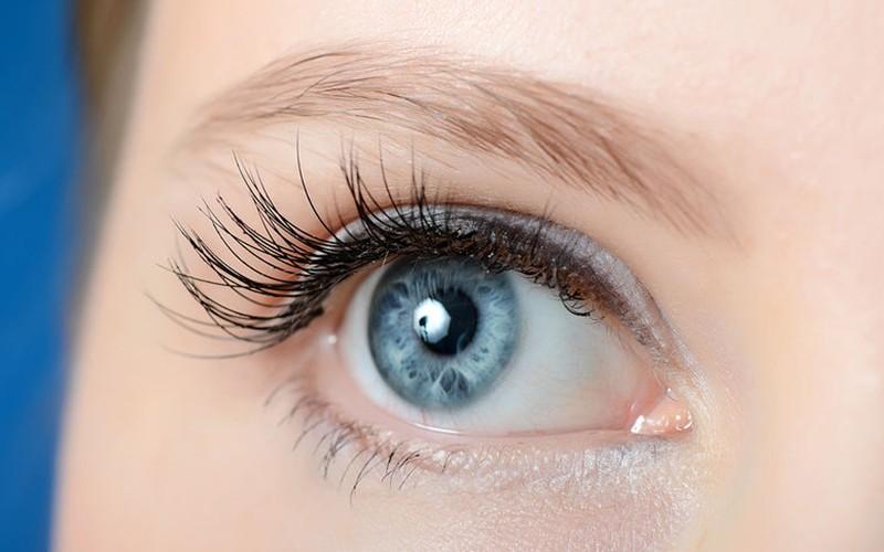 Volume Premium Eyelash Extension