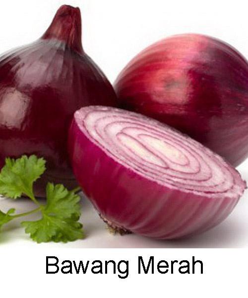 jual benih bibit sayur   bawang merah   anneui shop