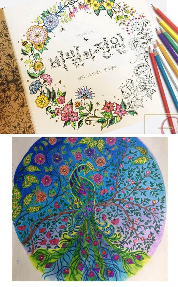 Gambar Jual Coloring Book Adults Buku Mewarnai Secret