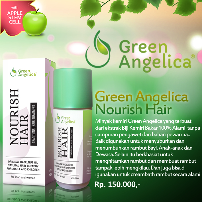 jual green angelica minyak kemiri penumbuh rambut bayi - klinik Cara Membuat Minyak Kemiri Bayi