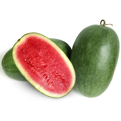 biji benih buah sawo madu berisi 4 butir. Source · Benih Bibit Premium Semangka Merah