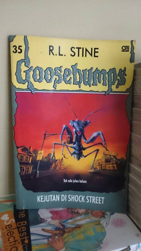 harga Goosebumps(35) Kejutan Di Shock street Tokopedia.com