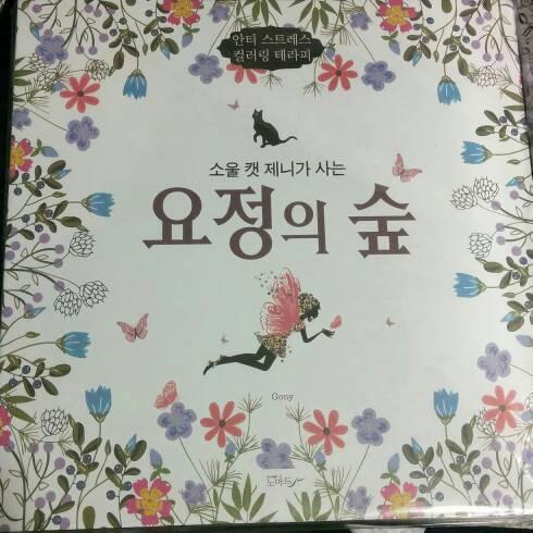 Jual Buku Mewarnai Coloring Book For Adults Fairy Ori Korea