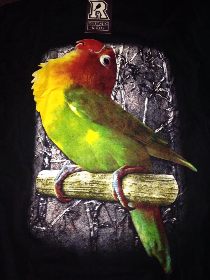 Gambar Burung Love Bird Termahal Gambar V