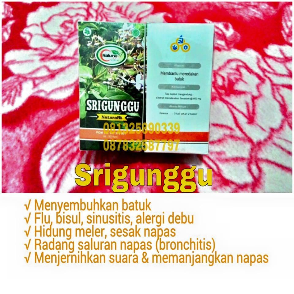 cari obat flu halaman 4 jual madu herbal gurah flu amp batuk herbal jakarta