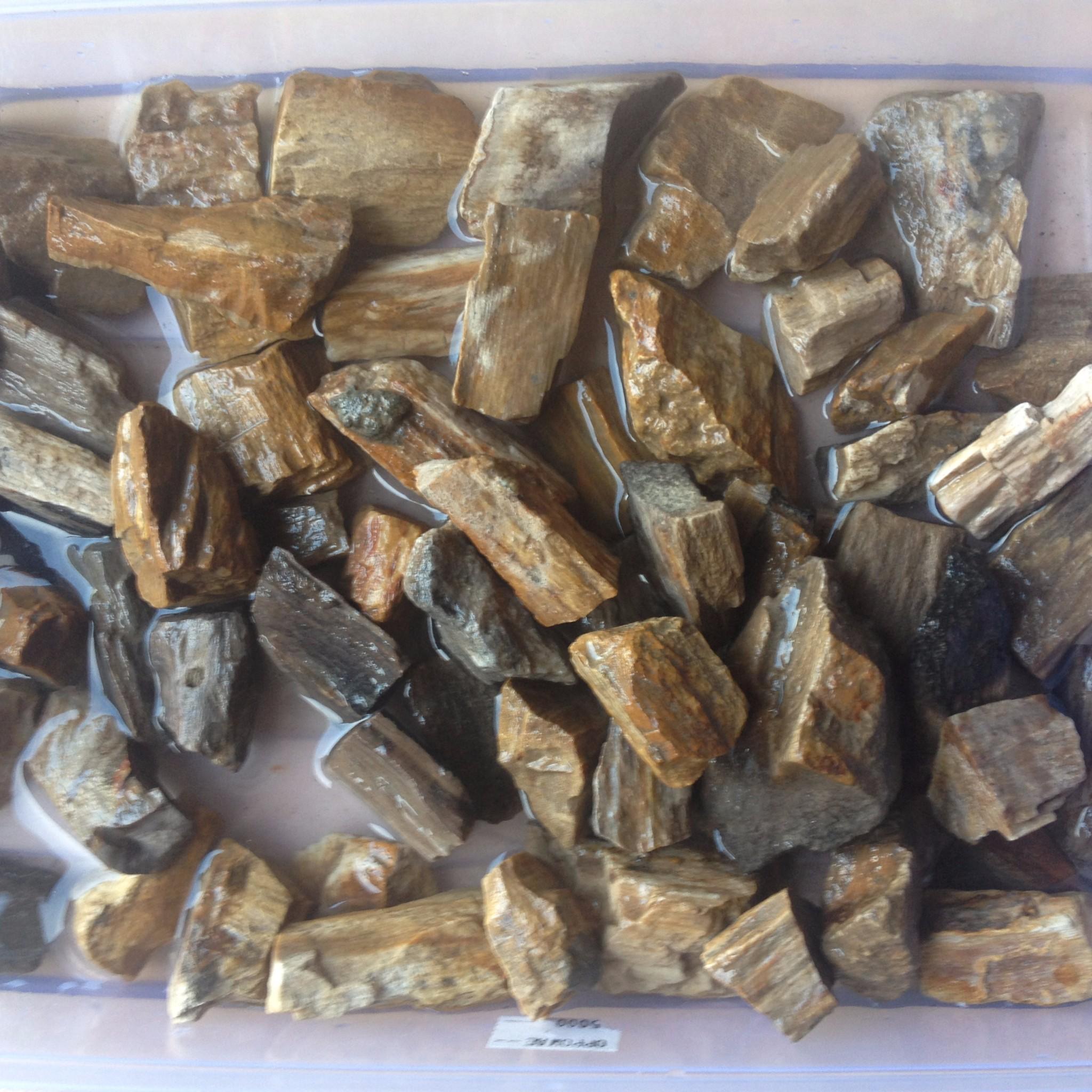 Harga Jual Bahan Batu Akik Rough Fossil Fosil Kayu Jati