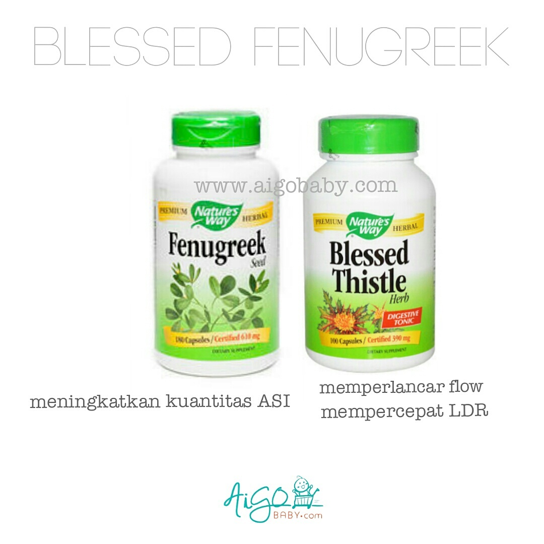 Jual PAKET ASI BOOSTER FENUGREEK + BLESSED THISTLE - Damai-Shop | Tokopedia. Source · Nature's Way - Vitex Fruit, 400mg (100 Veggie Caps) -. Source ·