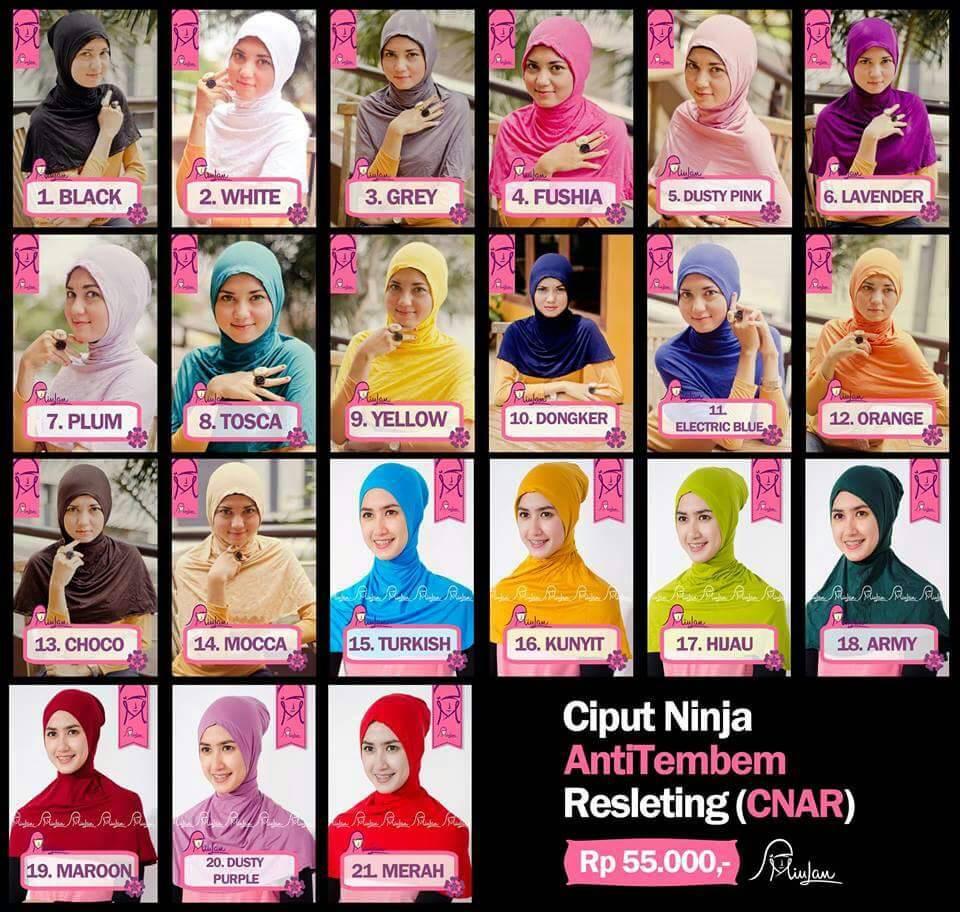 harga Ciput Ninja Antem Resleting (CNAR) Tokopedia.com