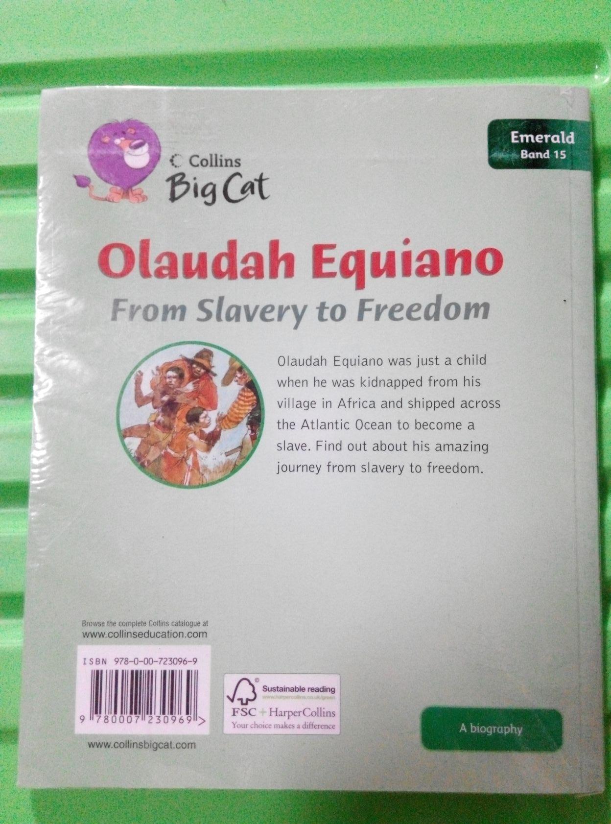 Equiano essay olaudah