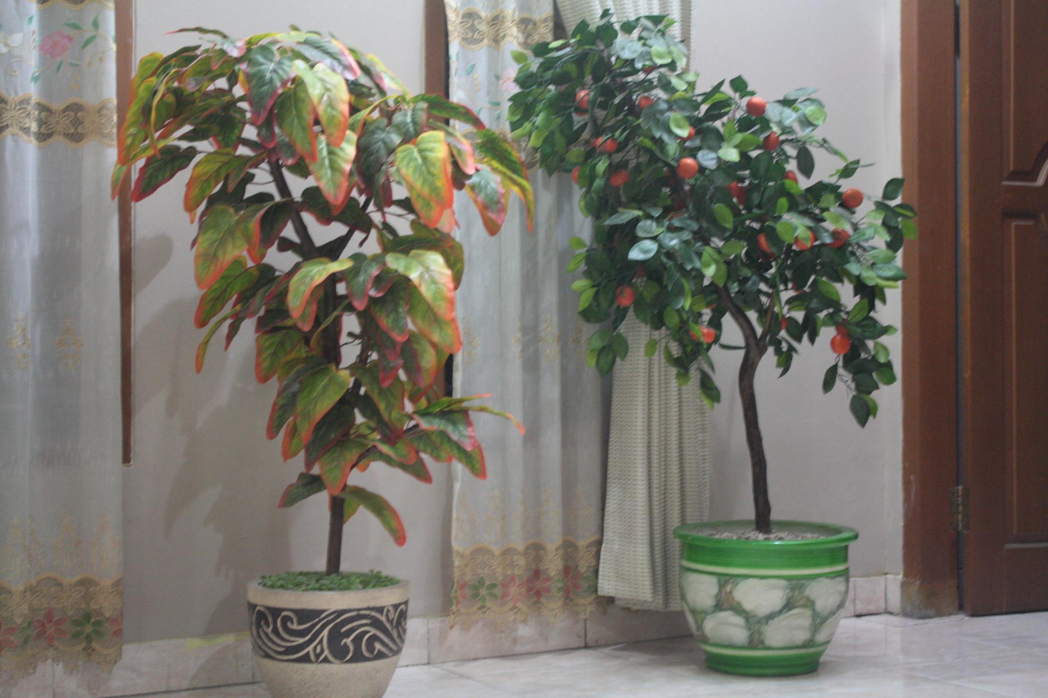 tanaman imitasi artifisial 4