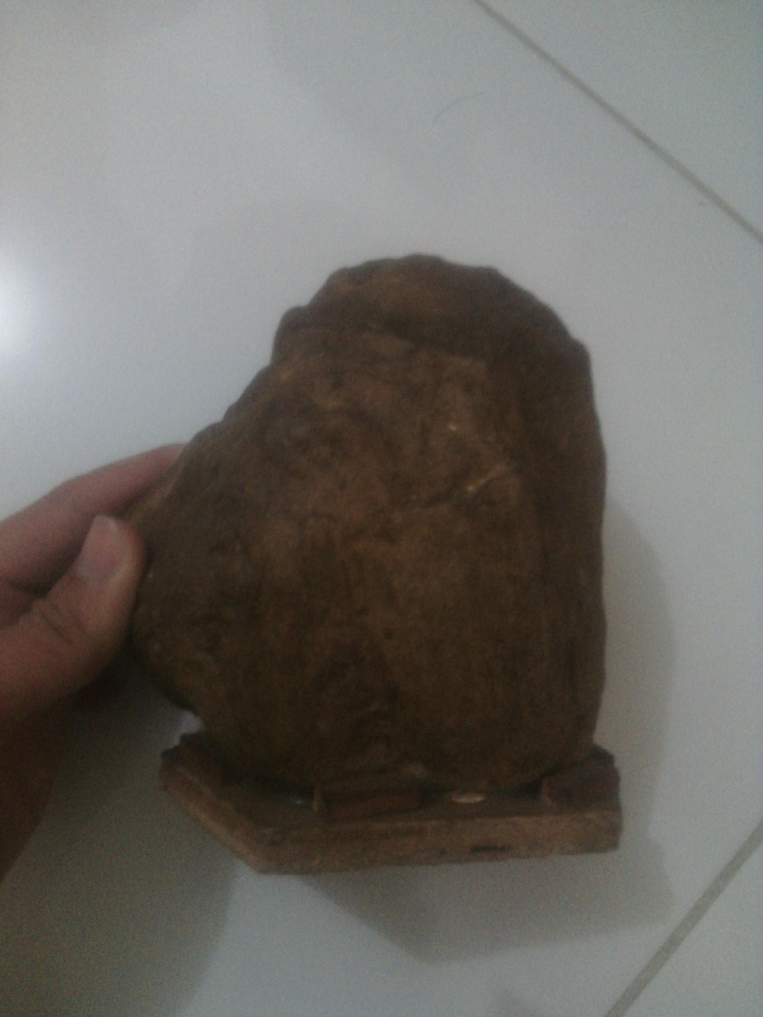 harga batu fosil kayu Tokopedia.com