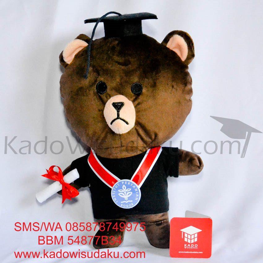 harga Boneka Wisuda Brown LINE Character Coklat 28 cm Kado Wisudaku Tokopedia.com