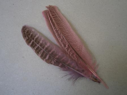 Leather Bookmark: Bulu Ayam Hias Ajaib Beranak Untuk Pembatas Buku