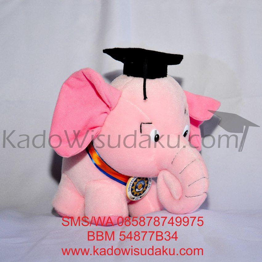 harga Boneka Wisuda Gajah Bona Pink 22cm Kado Jogja Tokopedia.com