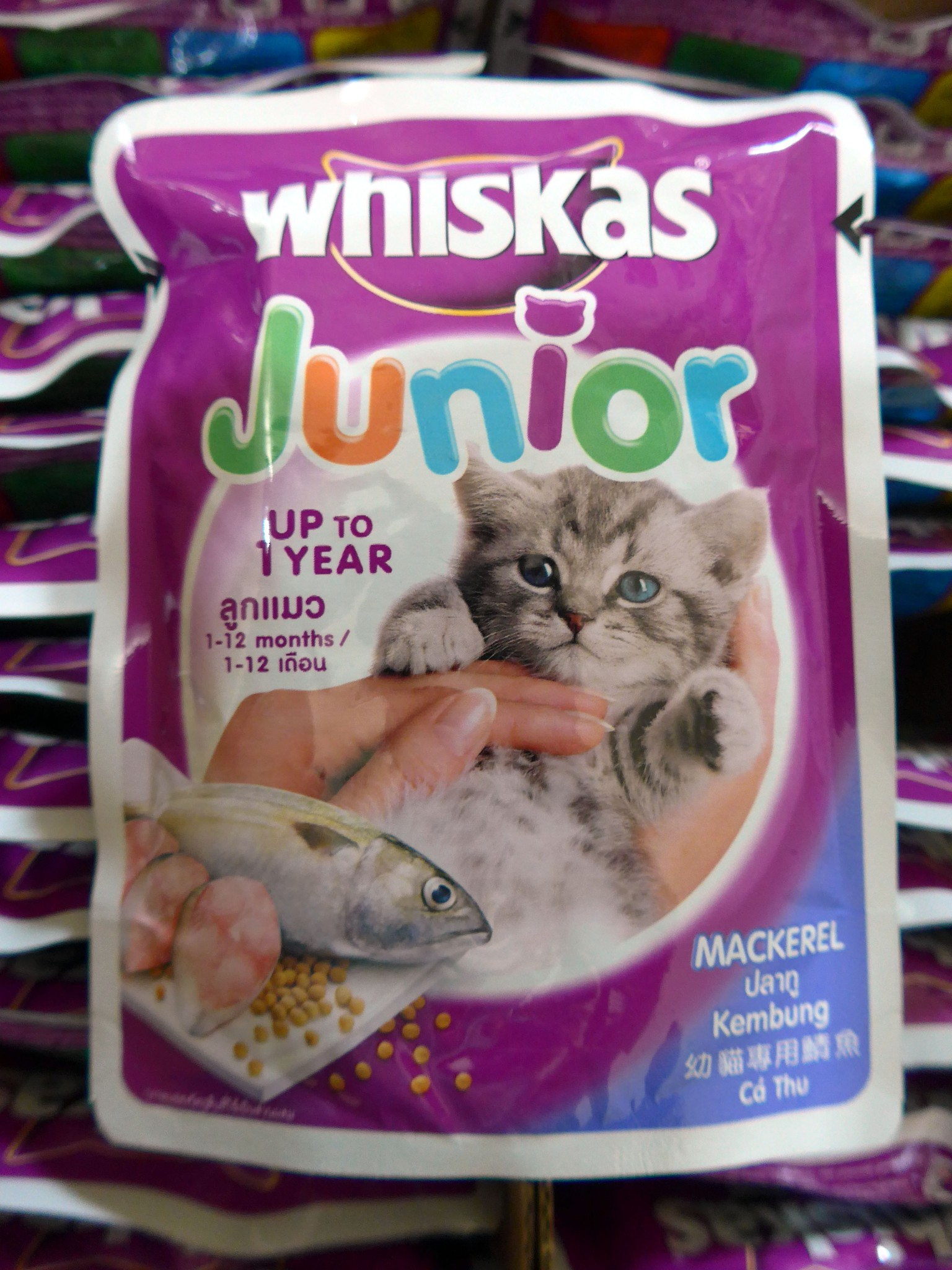 Jual Makanan Kucing Whiskas Welcome To Dry 12kg Kering Rasa Mackerel Junior Pouch 85 Gram