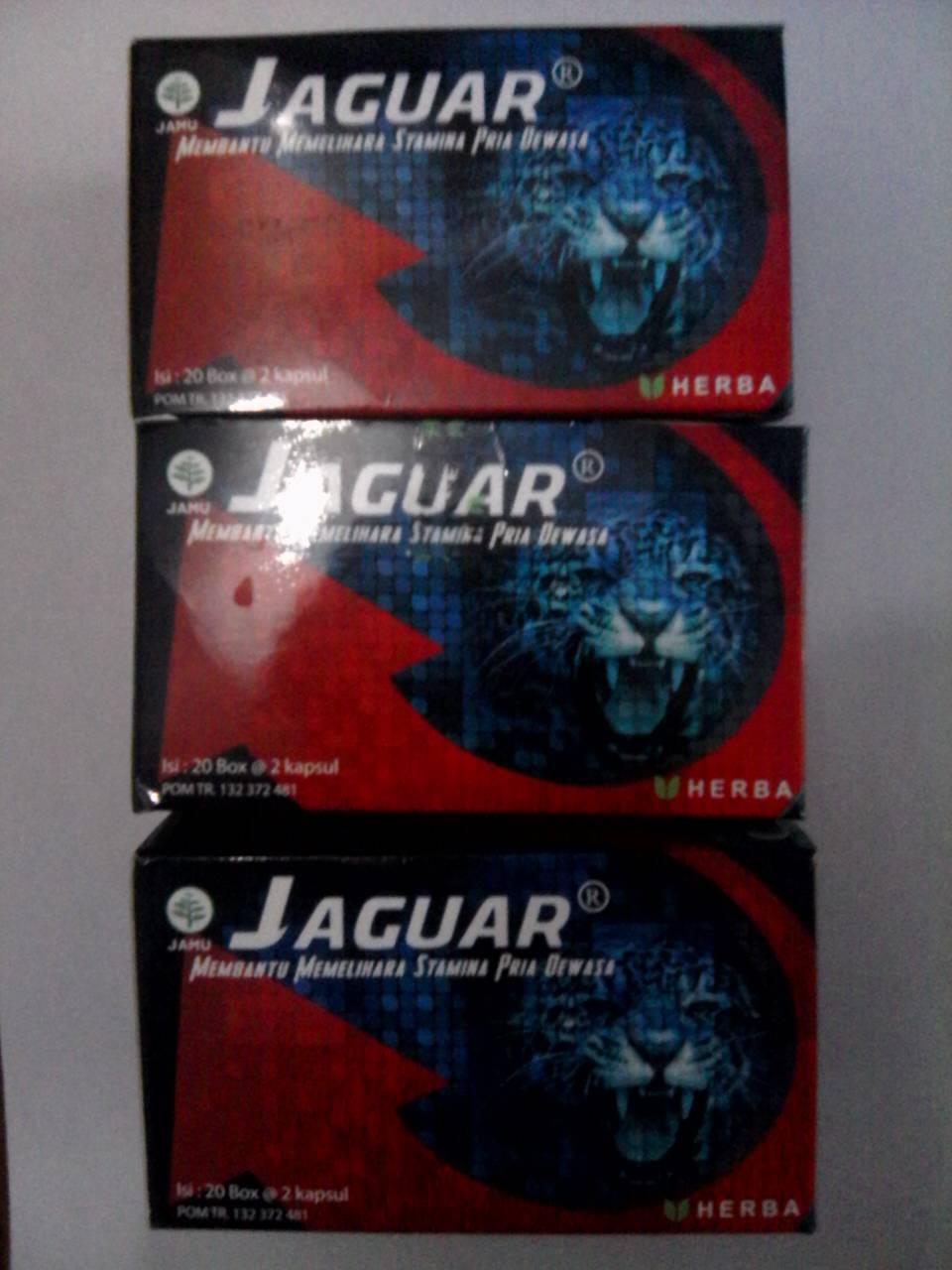 kapsul obat kuat jaguar duta herbal indonesia toko dan apotek www