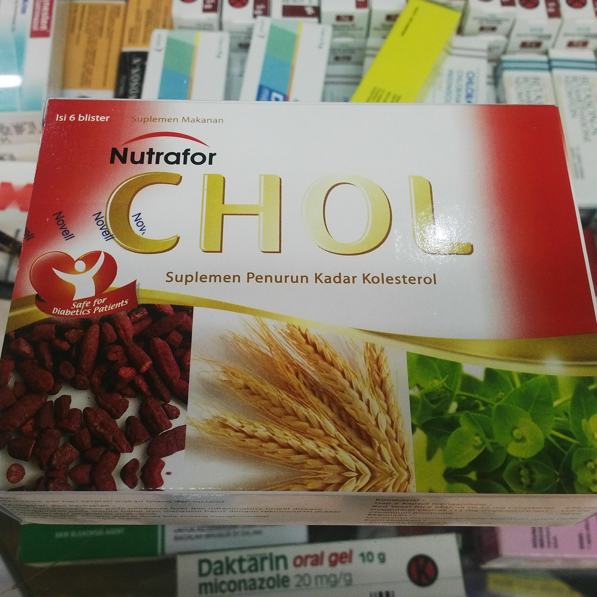 Prolipid Herbal Alami Untuk Kolesterol Kotak 60 Kapsul Update Produk Bumn Biovision Dus Isi 30 Source Kadar Jual Suplemen Dan Vitamin Penurun
