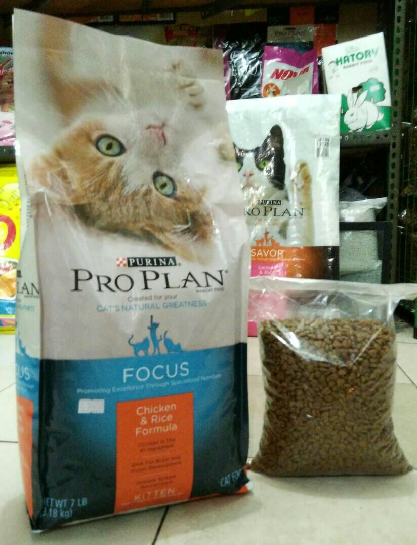 Proplan Kitten Makanan Kucing Repack 1kg Daftar Harga Terbaru Salmon Cat Food