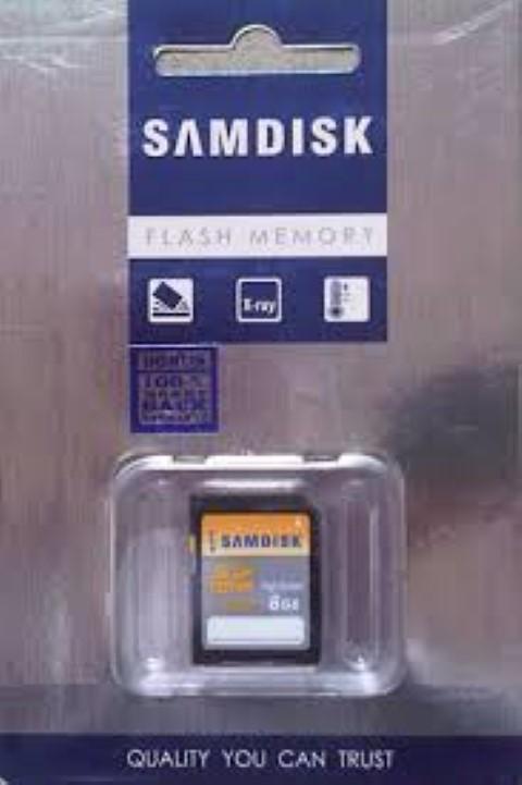 Memori Kamera SAMDISK SD 8 GB Class 10 Speed 30 Mbps