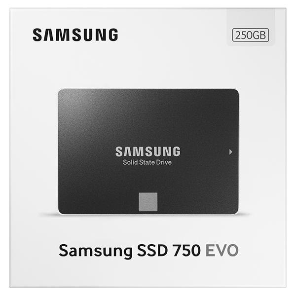 Harddisk SSD Samsung 750 EVO 2.5' 250GB Internal SATA