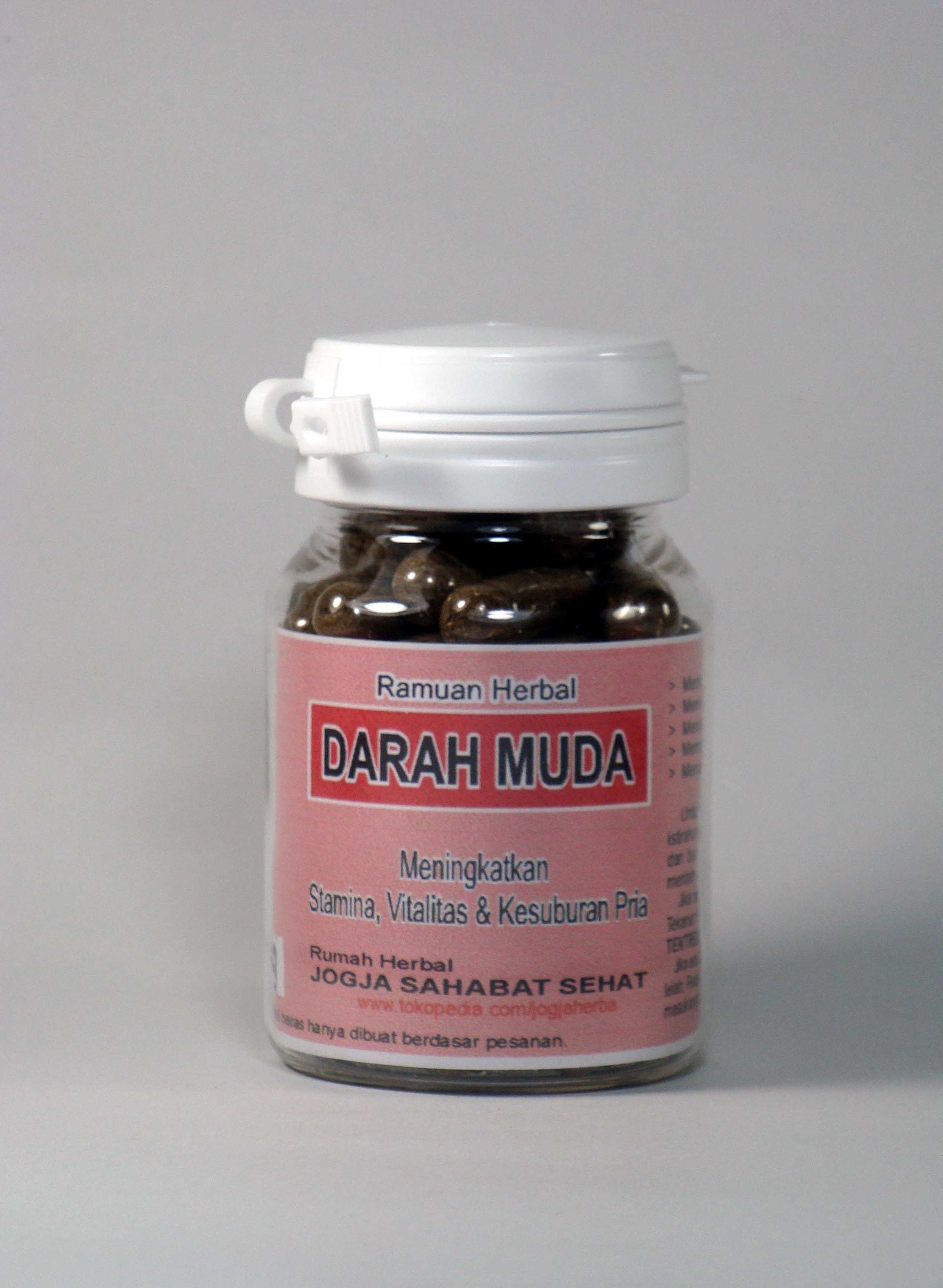 Obat Kuat Alami, Resep Ramuan Obat Kuat Herbal