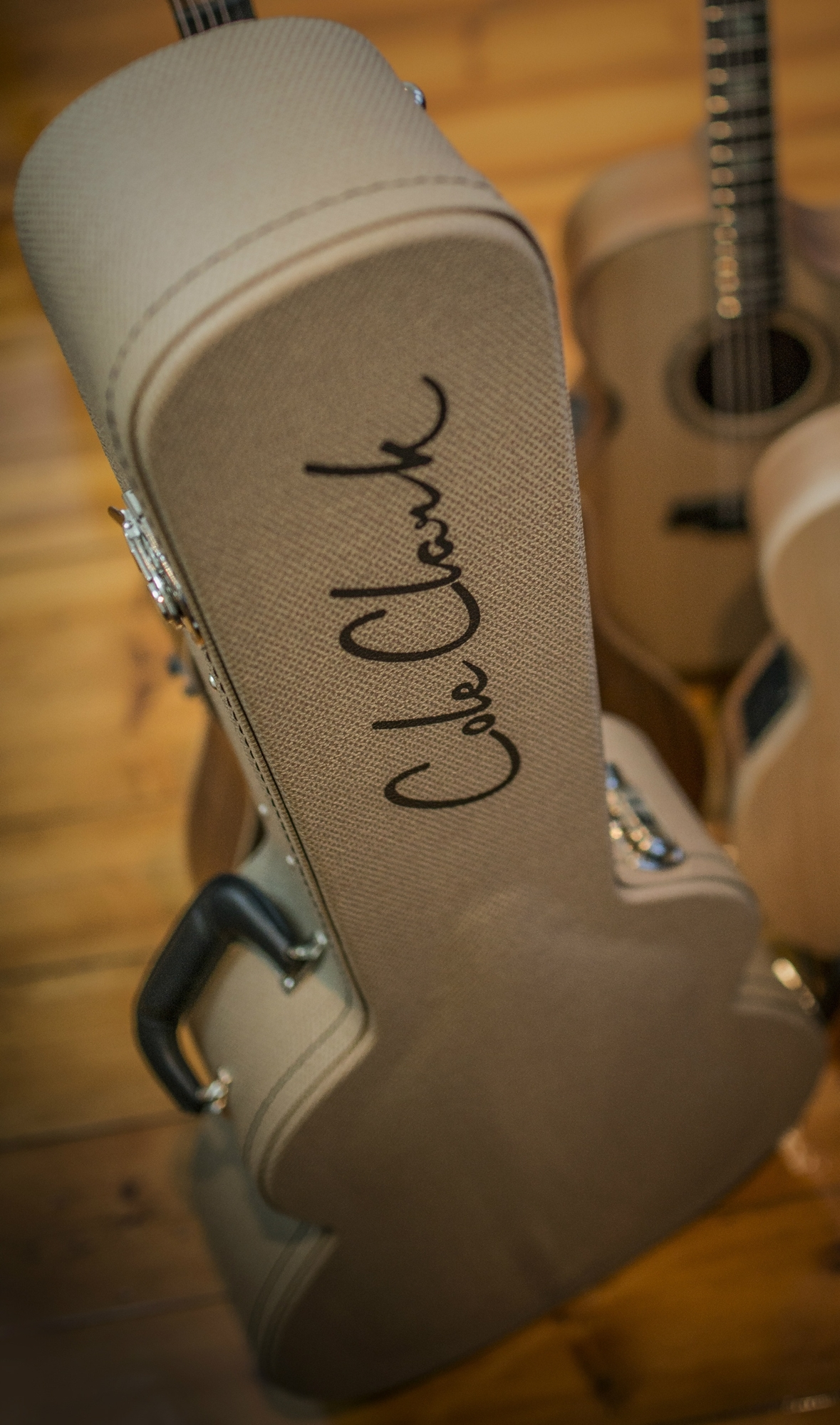 Gitar Akustik Elektrik Cole Clark Australia Fatlady Fl2ec-rdrwe