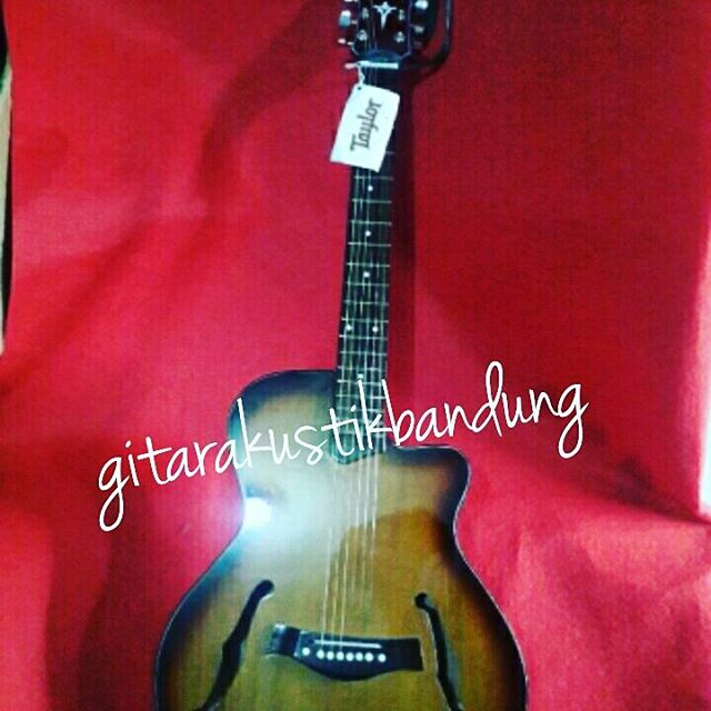 Gitar Akustik Murah Taylor T5