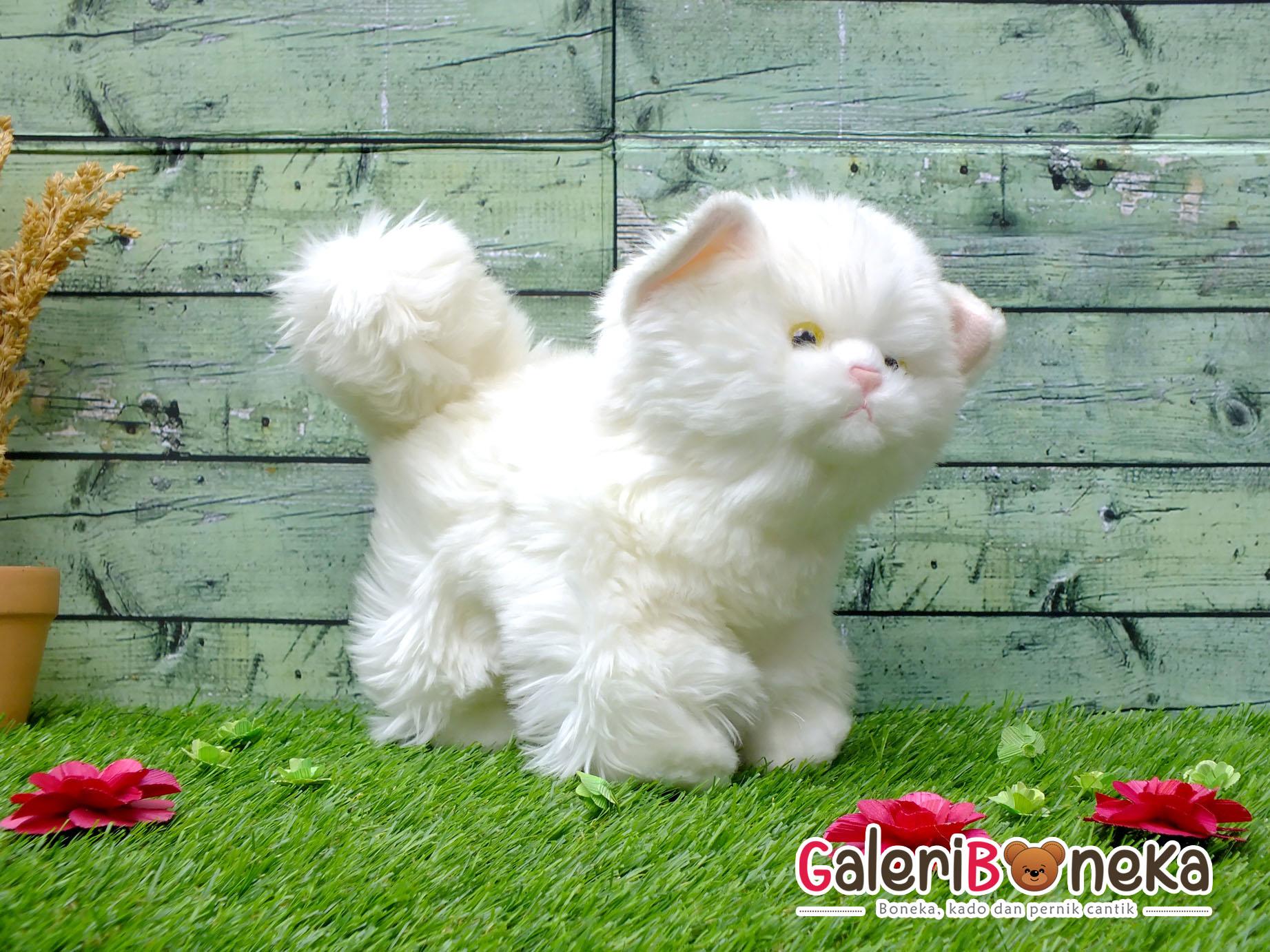 Boneka Kucing Putih ( HK - 337235 )